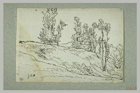 Côteau avec des arbres aux environs de Vichy