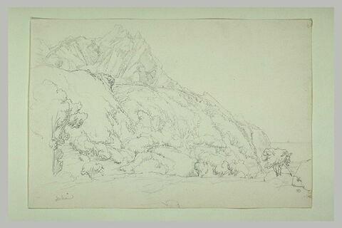 Paysage à flanc de montagne