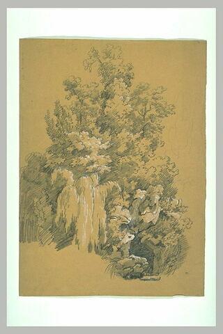 Rochers et arbres