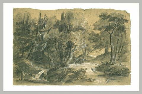 Voiture sur une route qui traverse un bois