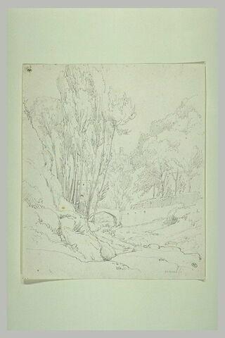 Vallon planté d'arbres et traversé par un pont