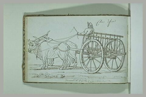 Boeufs tirant une charrette avec un personnage