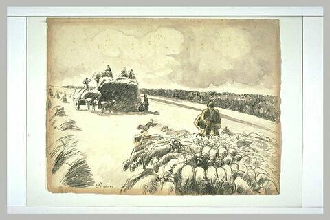 Troupeau de moutons dans un champ après la moisson, Eragny