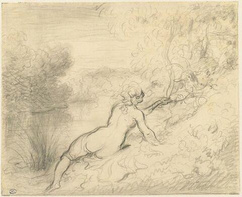 Femme jouant avec une chèvre dont la tête sort d'un buisson