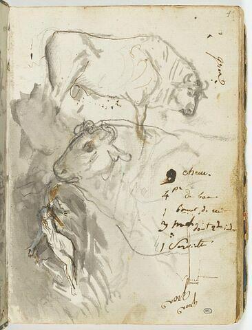 Deux études de taureau ; femme nue allongée, les bras écartés en croix ; esquisse d'une tour ?