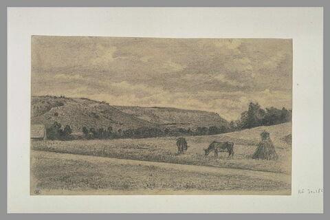 Paysage avec deux vaches