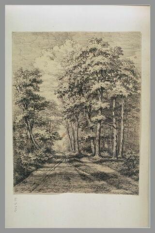 Route en forêt : 'Mont St Père 1849'