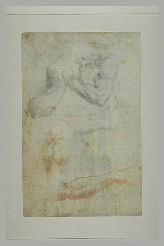 Etudes d'un torse aux mains jointes d'une épaule, de deux avant-bras