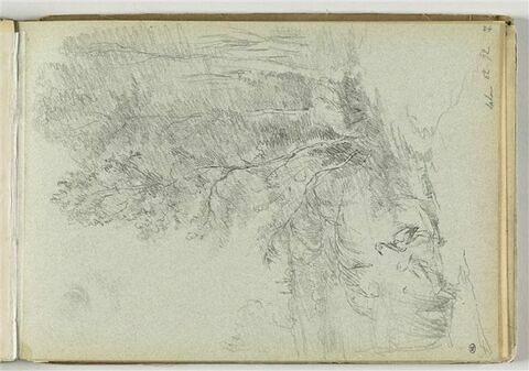 Paysage avec deux oiseaux au bord d'un étang