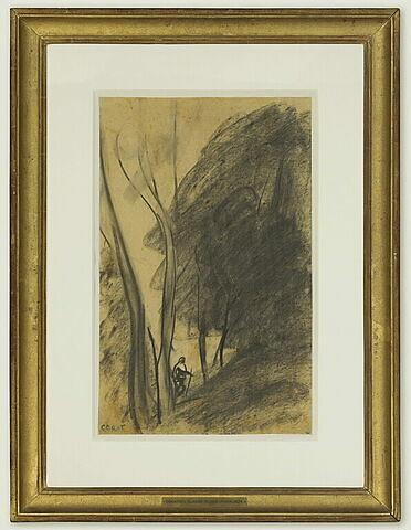Homme marchant sous les arbres