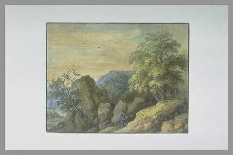 Paysage : un homme debout parmi des rochers