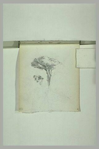 Croquis de personnages ;  étude d'arbre ; tête de chameau