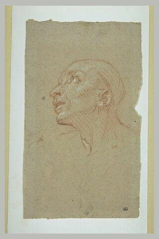 Tête d'homme, de profil vers la gauche