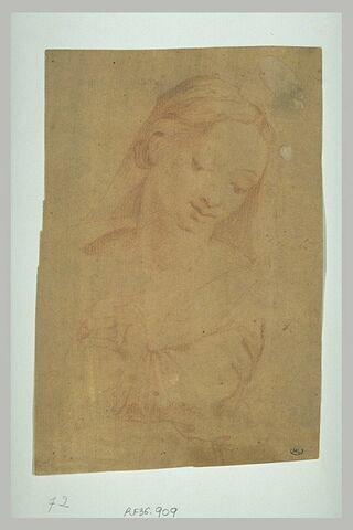 Tête de Vierge, légèrement inclinée vers la droite
