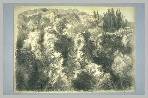 Paysage : 'Les Bois de Sèvres'