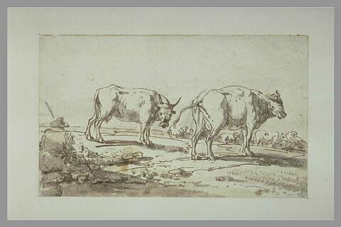 Paysan gardant un troupeau de vaches et de moutons