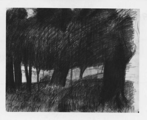 Les arbres noirs : au delà d'arbres, une plaine