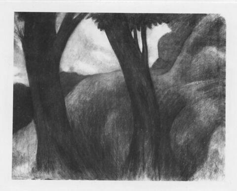 Paysage sombre : deux arbres se détachent sur une colline