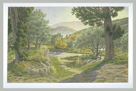 Vallée de l'Ouvize