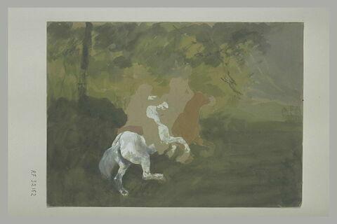 Cavaliers galopant dans un paysage