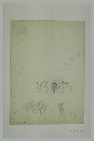 Officiers à cheval ; soldat ; selle ; groupe de chevaux