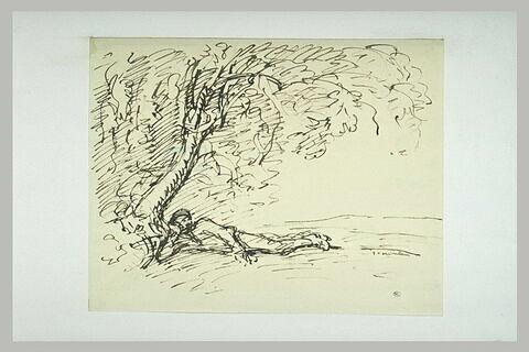 Homme étendu sous un arbre, la tête appuyée sur son coude