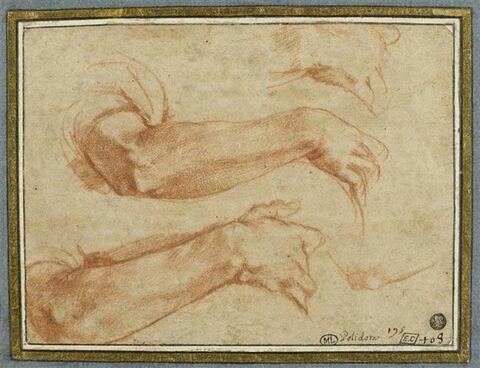 Deux études de bras droit ; études du coude et de la main du même bras