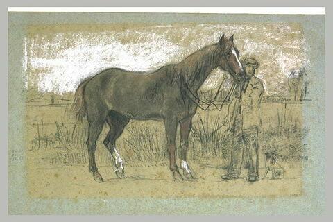 Homme retenant un cheval à l'arrêt