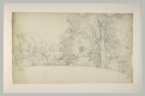 Paysage avec au premier plan une rangée d'arbres