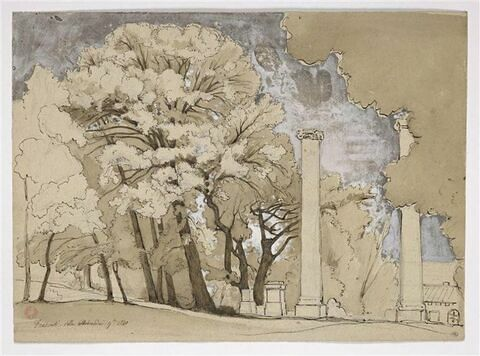 Frascati : colonnes antiques au milieu d'arbres