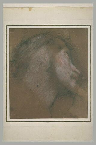 Tête d'homme, de profil, vers la droite, regardant vers le haut
