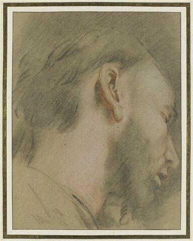 Tête d'homme barbu, de profil, vers la droite, regardant vers le bas