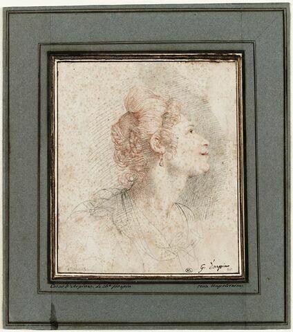 Tête de femme, vue de profil, tournée vers la droite