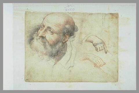 Tête d'homme barbu, de trois quarts et deux études de mains tenant une corde