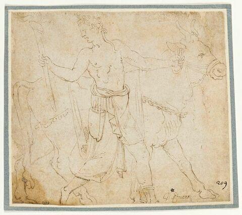 Un sacrificateur conduisant un taureau et tenant un flambeau de la main