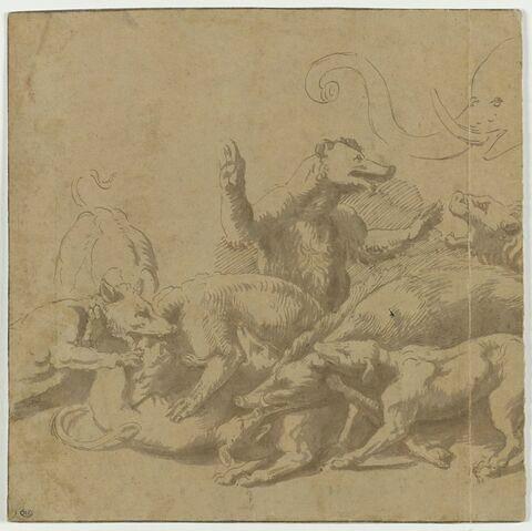 Combat entre des chiens, sangliers, ours et un éléphant
