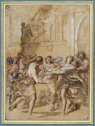 Métamorphose d'Harmonilus en citronnier