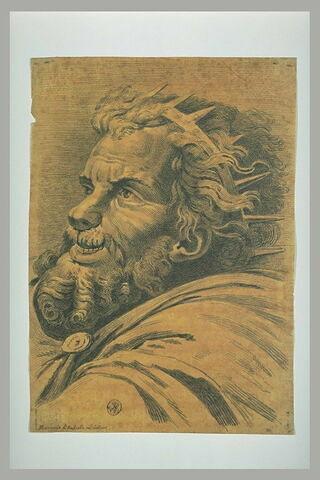 Tête de roi barbu : Maxence dans la Bataille de Constantin