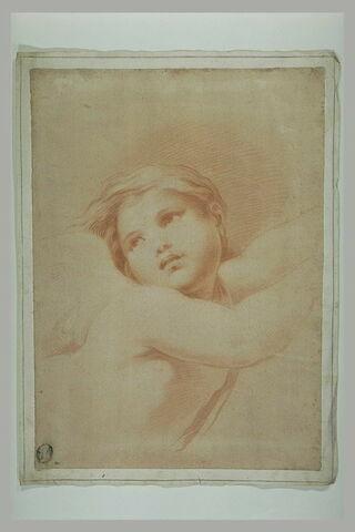 Palaemon, vu en buste, d'après la fresque de la Loggia de Galatée