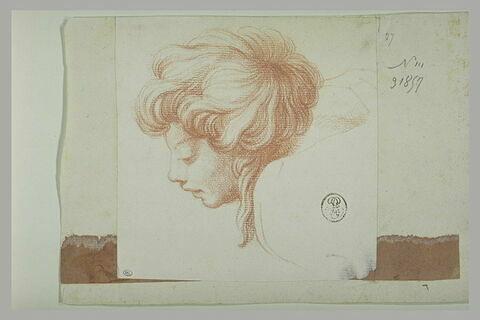 Tête de jeune homme, de profil : figure de l'Ecole d'Athènes