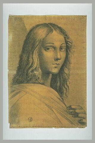 Francisco Maria della Rovere, vu en buste : figure de l'Ecole d'Athènes