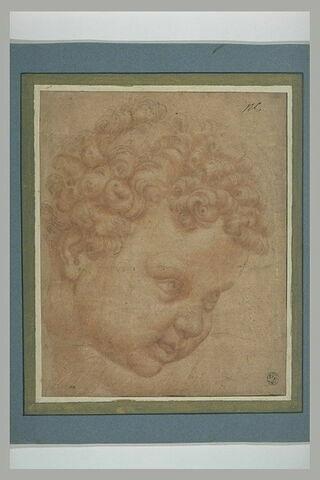Tête d'enfant levée : l'Enfant de la Grande Sainte Famille de François Ier