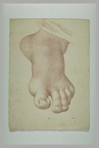 Pied gauche de saint Paul