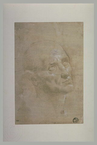 Tête d'homme chauve, de trois quarts, à droite