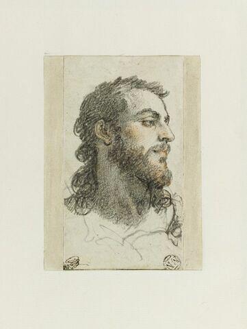 Tête d'homme barbu, aux longs cheveux, se tournant vers la droite