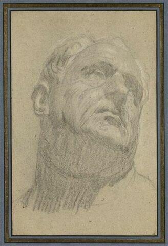 Tête de Vitellius