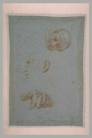 Tête de jeune homme, de face, profil d'homme et deux mains ouvertes