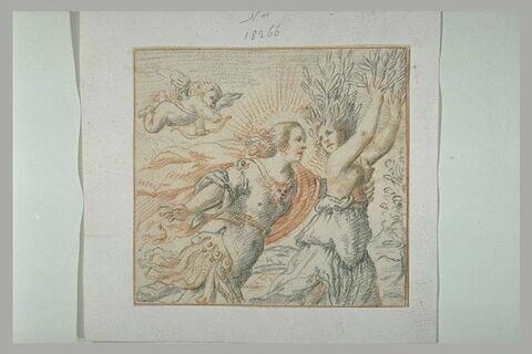 Daphné, attrapée par Apollon, se changeant en laurier