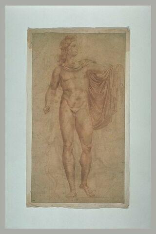L'Apollon du Belvedere, vu de face