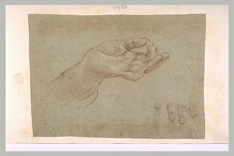 Une main ouverte, l'index sur le pouce et l'extrémité de quatre doigts